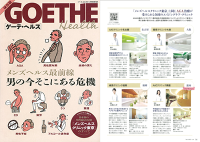 goethe201411